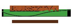 Logo Klub Windsurfingowy Balticsurf